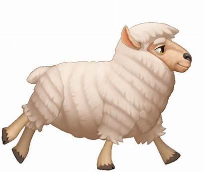 Animal Run Cycle Animals Sheep Animation Animated
