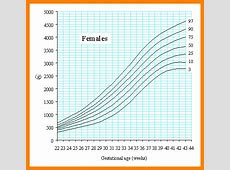 8+ infant growth chart calculator Introduction Letter