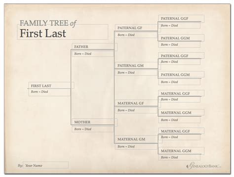 Downloadable Family Tree Template family tree template free