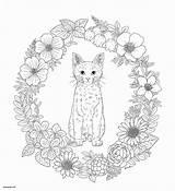 Mandala Coloring Cat Pages Animal Bubakids Thousand Regarding Through Line sketch template