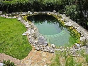 Pool Reinigen Hausmittel : die besten 25 pool reinigen ideen auf pinterest my pool naturschwimmbecken und natur pool ~ Markanthonyermac.com Haus und Dekorationen