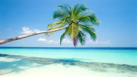 island background maldive islands wallpapers best wallpapers