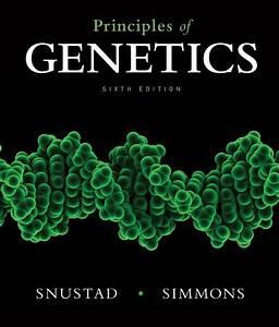 Principles Of Genetics By D  Peter Snustad  Michael J