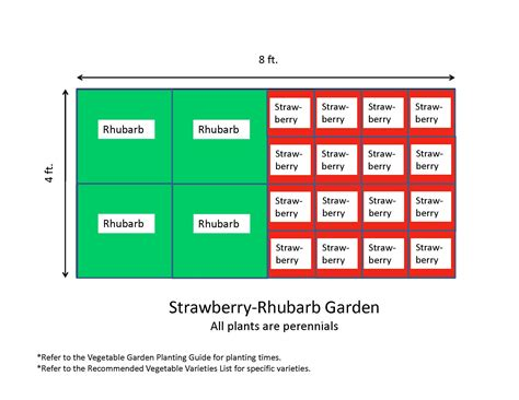 Planning 4x8 Vegetable Garden Layout With Strawberry And