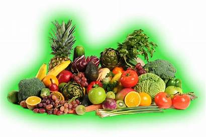 Vegetables Fruits Genetically Modified