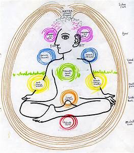 The Chakras On The Tree Of Life
