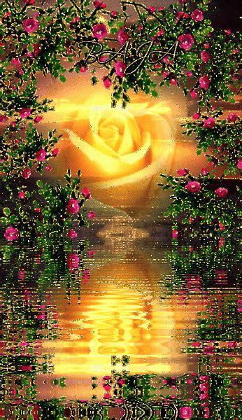 imagenes de amor  movimiento  compartir  flores