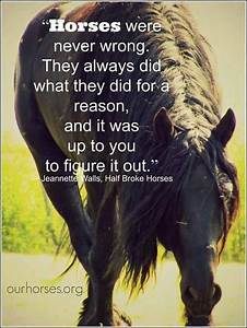 Quotes About Horse Jumping. QuotesGram