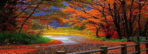 autumn path facebook cover