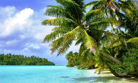 Tropical Island Background (57+ Images