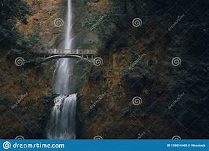 Beautiful, Shot, Of, A, Forest, Arch, Bridge, With, Amazing, Clear