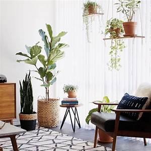 plante interieur design affordable inou porte plante With chambre bébé design avec plante bach