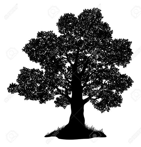 oak tree clipart black and white live oak tree clip 71