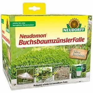 Spritzmittel Gegen Buchsbaumzünsler : buchsbaumz nsler ~ Watch28wear.com Haus und Dekorationen