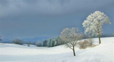 photo de d artagnan panoramio photo of paysage de neige 224 estal 46 janvier 2010