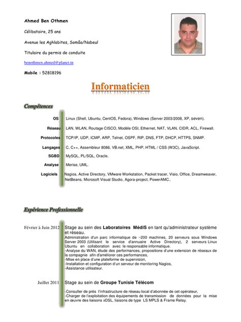 exemple cv scientifique en anglais cv anonyme