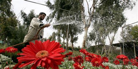 siege botanic le talent de la semaine du 12 06 2016 par emmanuel duteil