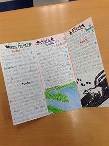 amazing student work on an ecosystems brochure research With brochure templates for school project