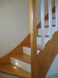 escalier en couleur gris ciabizcom With peindre escalier bois en blanc 2 relookage escaliers atelier couleur et bois