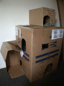 cardboard house for cats diy cardboard cat houses tutorial diy cat tree condo