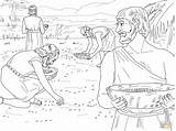 Manna Quail Coloring Moses Bible Google sketch template