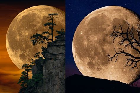 tale   moons peter liks photographs called