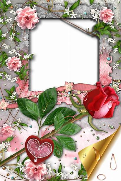 Frames Romantic Frame Transparent Heart Rose Marcos