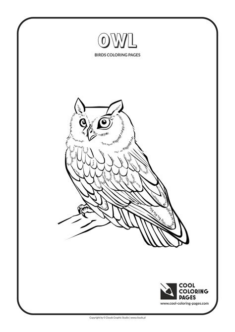 cool coloring pages birds coloring pages cool coloring pages  educational coloring pages