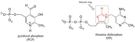 band structure chemistry libretexts structures of common coenzymes chemistry libretexts