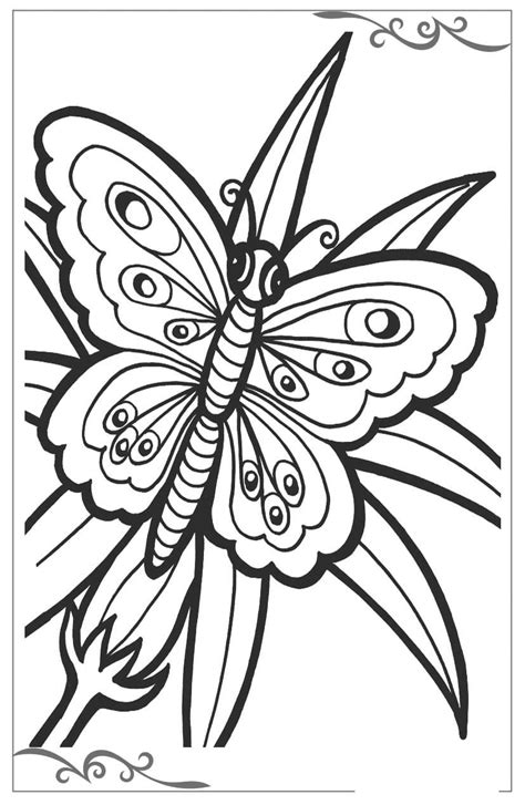 immagini colorate bellissime pagine da colorare con disegni di farfalle per bambini