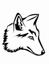 Drawings Coyotes Coloring Coyote Popular Coloringhome sketch template