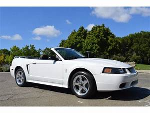 2001 Ford Mustang SVT Cobra Convertible for Sale   ClassicCars.com   CC-991510