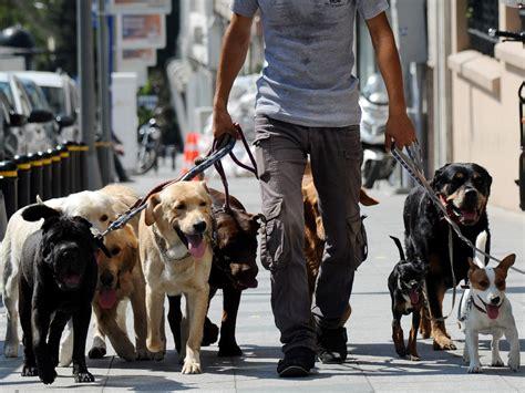 dog poop walker walkers bag fail fine independent