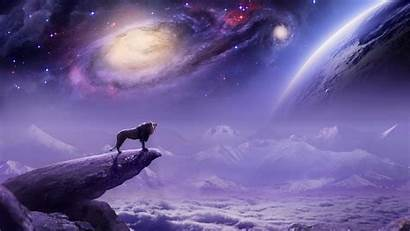 Wolf Space Sunset Wallpapers Water Sun Rock