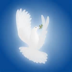 Peace Dove Olive Branch