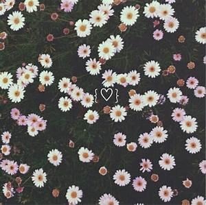 background, cool, cute, daisy, emoji, floral, flower ...