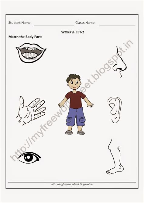 matching worksheets  kids picture vehicles