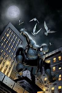 209 best images about Black Suit Spider-Man on Pinterest ...