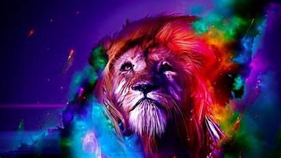 Lion Colorful Source