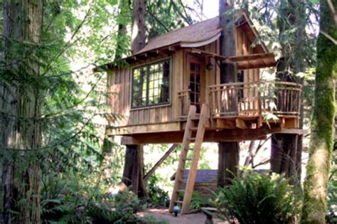 Brewery In A Treehouse, Trademark Stuff, And More Your
