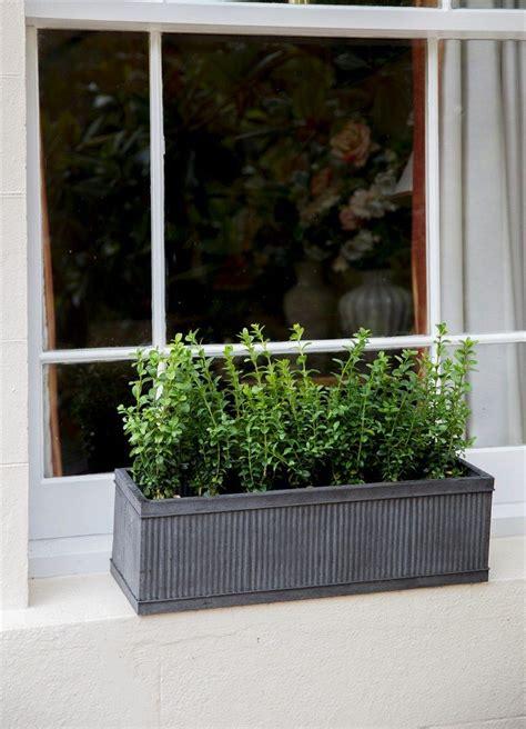 Window Sill Garden Planters by Metal Window Sill Planter Interior Design Ideas