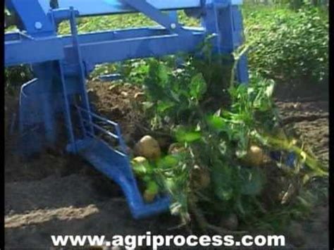 arracheuse de pomme de terre 224 grille transversale