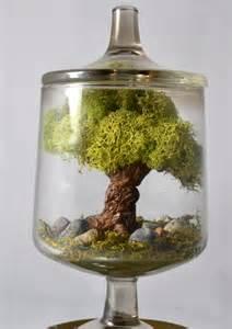 tree terrarium miniature landscape terrarium tree sculpture real moss glass terrarium