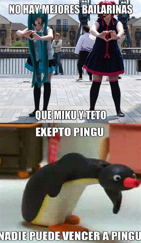 Pingu Memes - pingu meme