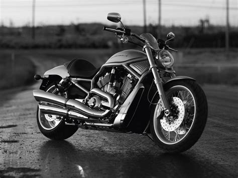 2010 Harley-davidson Vrscaw V-rod Pictures. Accident