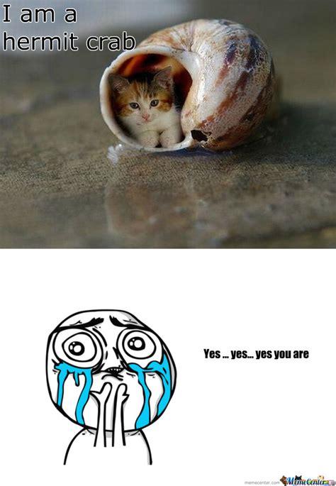 Crab Meme - hermit crab by recyclebin meme center