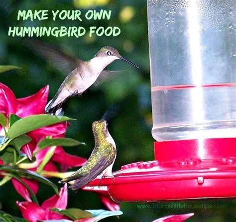 1000 ideas about hummingbird food on pinterest