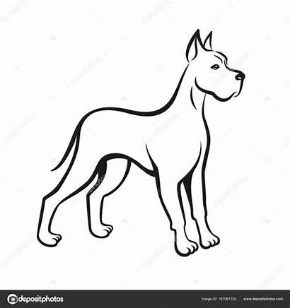 Dog Drawing Dane Line Pet Hond Lijntekening