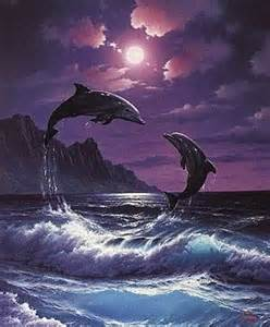 Moonlight Dolphins Real