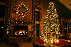 how to find the best christmas tree for your home clickhowto